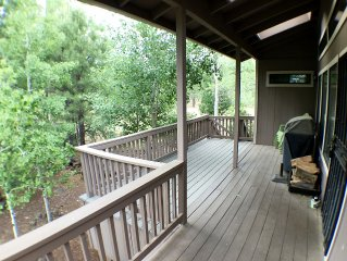 Fun For The Whole Family - Large Porch In The Trees - Loft Games For The Kids!
