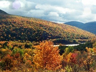 Andes Cabin Retreat-Spectacular View Adjoining ~NYC~ Reservoir