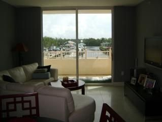 Designers Intercoastal Waterfront Condo