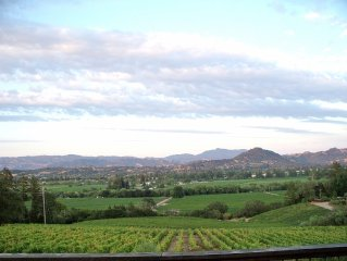 Healdsburg Bliss House-Sonoma Wine Country Sweeping Panoramic Vineyard Views