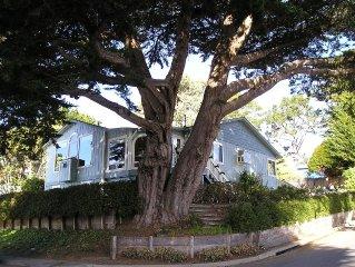 Moss Beach House with spectacular Ocean View and walking distance of beaches.