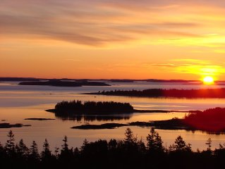 The Natural Beauty of Downeast, ME surrounds Pyne Cove Cottage and welcomes you!