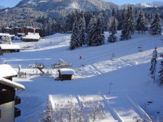 Visit the spacious apartment at the foot of the ski and mountain biking slopes