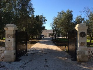 Beautiful new house and pool in the heart of an olive grove of over 1 hectare