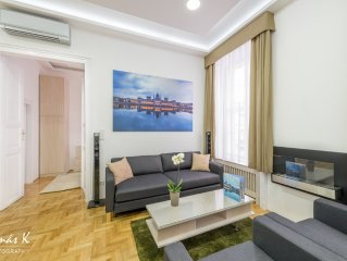 Brand New, Luxury 3 Bedroom Apartment With High Ceilings, Fireplace
