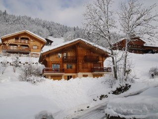 Chalet in French Alps -  Beautiful, quiet location