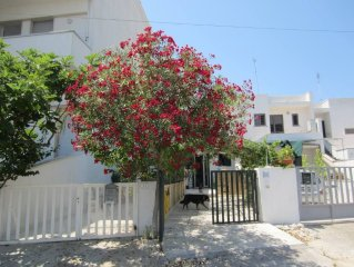 La 'Casa sul Bacino' con giardino e pergolato dietro