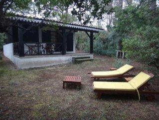 House / Villa - Lege-Cap-Ferret