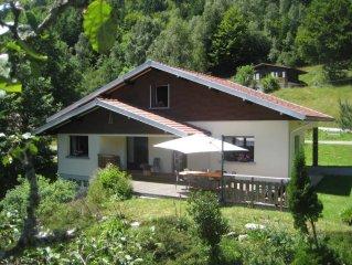 House / Villa - La bresse
