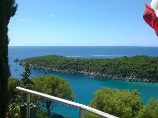 Villa a Fetovaia con splendida vista mare ,  a 200 mt dalla spiaggia , parco