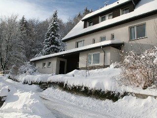 Charming Villa On The Forest Edge In Brilon Wald (12 Pers.) (200+ sqM)