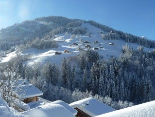 Ski au pied à 80m, vue imprenable, terrasse de 70 m², 8 à 12 personnes