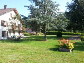 Gite 'Nid Douillet' VENTRON La Bresse WIFI RANDOS/place DESCENTE LUGE aire de JE