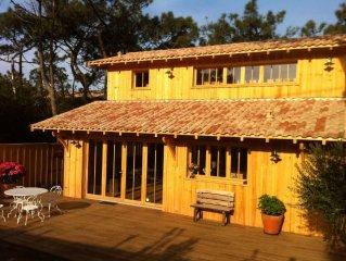 CAP  FERRET  , tres belle villa neuve en bois