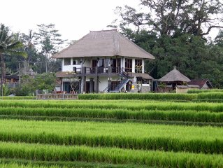 Villa near Ubud, panoramic view of rice fields and the volcano