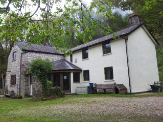 Spacious, cosy, secluded cottage in a woodland/bluebell setting near Tintern