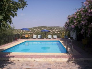 Villa 16/20 Pers. air cond. and private pool protected by barrier