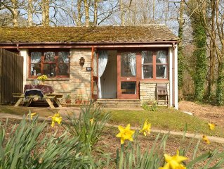Woodland Holiday Cottage, Close To St Ives,  Indoor heated Swimming Pool