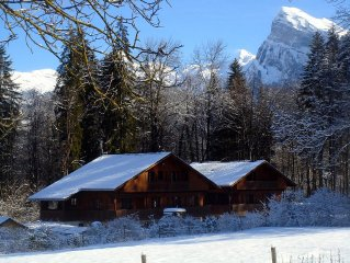Beautiful, spacious apartment in chalet in Morillon village, close to lifts
