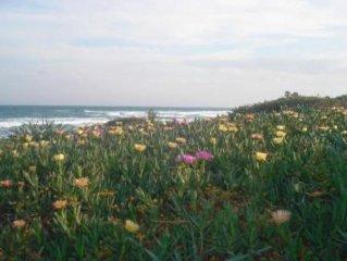 Maamoura: Maison au bord de la Mediterranee (Les pieds dans l'eau)
