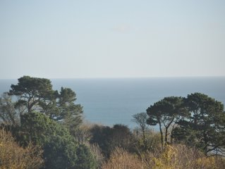 Breathtaking Sea Views, Private Outdoor Terrace, free WiFi, Dartmouth nearby