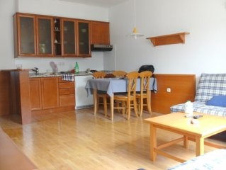 Comfortable Apartment 2 Minutes Walk From A Stunning Lake Bled