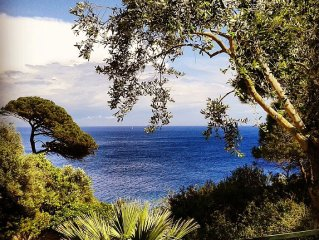 ELBA Bilo on the cliffs on private cove with pools garden + DISCOUNT SHIP