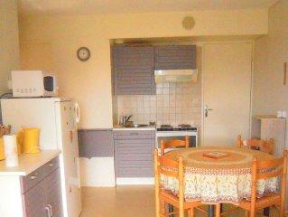 Appartement 2 pièces 32m2  Pégase/Phénix - Domaine des Sybelles (310 km de piste