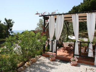 Studio Apartment Surrounded By Pine Trees With Wonderful Sea Views