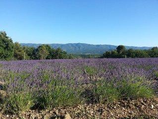 Gite en pierre avec piscine 10X5 en Provence luberon a caseneuve, calme,nature