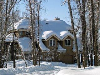 Spectacular Teton Valley Town home
