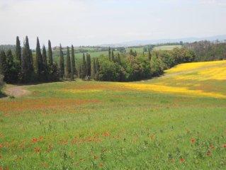 Campagna toscana, piccolo borgo tra Siena e la Val d'Orcia, 50 notte/300 settima