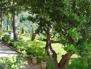 Lovely apartment in the green which tells the story of Sabina