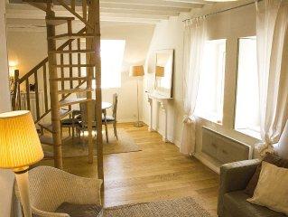 Duplex 4 pers centre historique Blois (vue Loire et  Château)