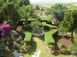 Primo piano in villa signorile, vista panoramica, con giardino curato e piante a