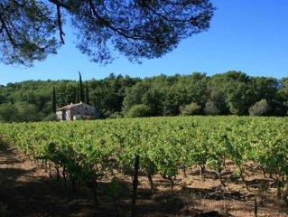 Maison Provençale au milieu des vignes avec piscine et tennis privés
