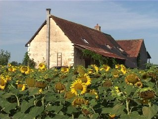 Rustic Farmhouse in Peaceful Setting + private pool - Loire valley/indre France
