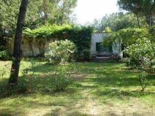 Casa con giardino immersa nella pineta