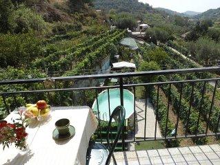 Sonnige Ferienwohnung in freistehenden Villa, Bauernhof, Garten, Pool, WiFi