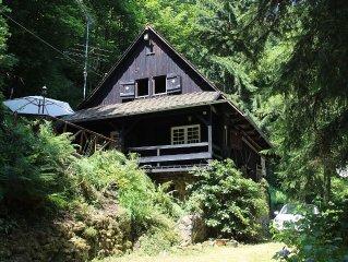 Schwarzwaldhaus für Naturliebhaber in Alleinlage