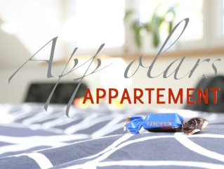 Romantic attic apartment in beautiful Laubegast n