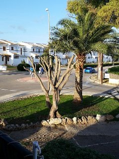Small, quiet apartment - only 500 meters to the beach