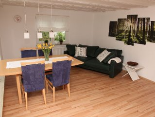 Spacious apartment - newly renovated / rehabilitated - in Freudenstadt-Dietersw