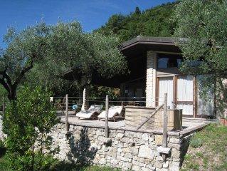 Landhaus innmitten eines Olivenhains mit Traumblick auf den Monte Baldo und See