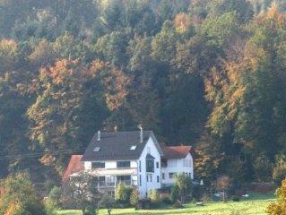 Appartement in Doppelhaushalfte mit Blick uber Schwarzwaldvorberge und Vogesen