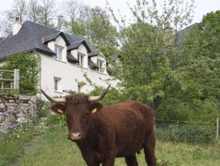 Gîtapart *** 'Chinto Bisto at the heart of the Cantal Massif near the Super-Lio