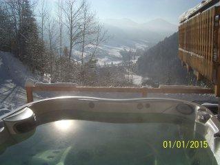 Appartement dans chalet de montagne vue sur la vallee et les pistes de ski