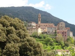 Centre of Corsican Island, 2 lovely T2 apartments in the heart of Omessa Village