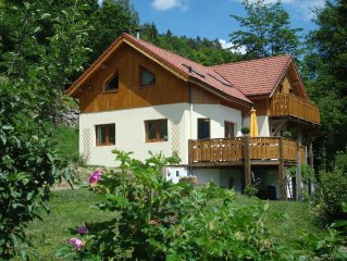 House in the village of Rochesson for 8-10 people with swimming pool