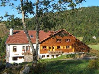 Appartement style chalet, environnement calme et sports de montagne à proximité